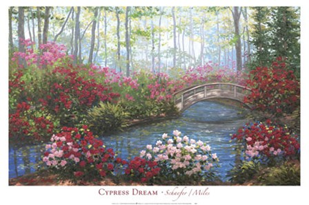 Cypress Dream by Miles Schaefer art print