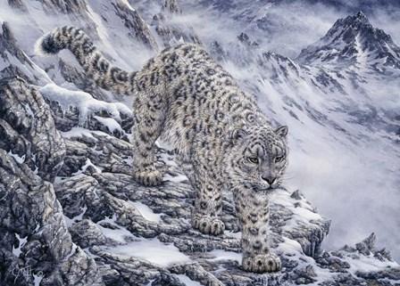 Snow Leopard by Jeff Tift art print