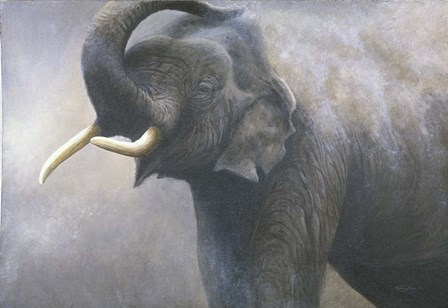 Asian Elephant Dusting by Dr. Jeremy Paul art print
