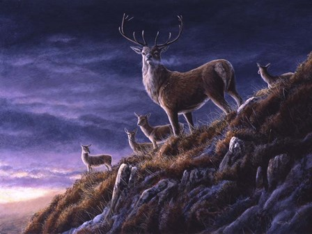 Threatening Sky Red Deer by Dr. Jeremy Paul art print