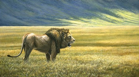 His Domain Lion by Dr. Jeremy Paul art print