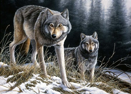 Over The Ridge Wolves by Dr. Jeremy Paul art print