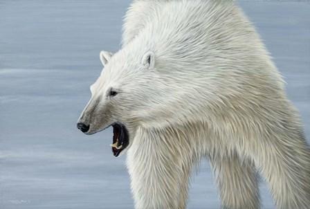 Polar Bear by Dr. Jeremy Paul art print