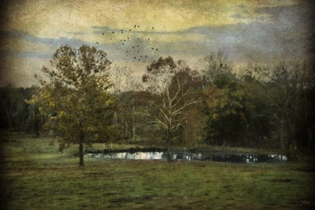 Quiet At The Pond by Jai Johnson art print