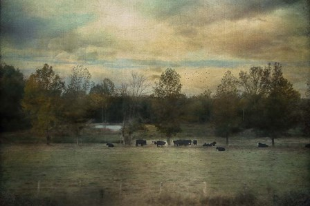Sunrise On The Farm by Jai Johnson art print