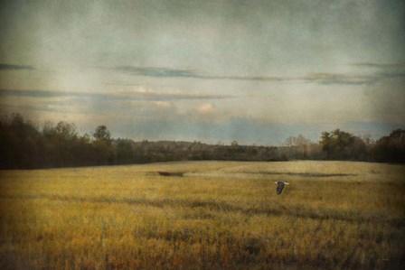 The Sunrise Hour by Jai Johnson art print