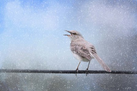 Mockingbird In The Snow by Jai Johnson art print