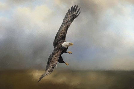 Up Against The Stormy Sea Bald Eagle by Jai Johnson art print