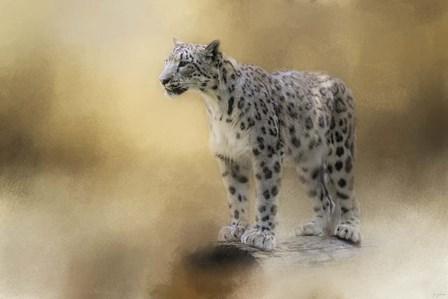 Snow Leopard by Jai Johnson art print
