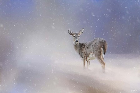 Doe In The Snow by Jai Johnson art print