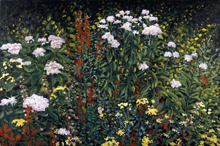 Wildflower Garden by Kevin Dodds art print