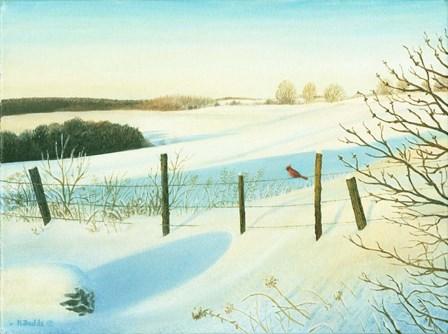Winter Wonderland by Kevin Dodds art print