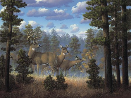 White Tail Family by R.W. Hedge art print