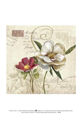 Fleurs De Paris 2 art print