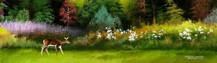 Doe In Spring Glade by Spencer Williams art print
