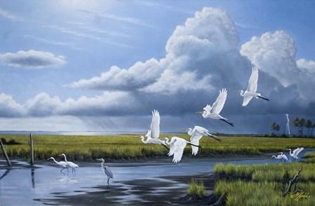 Summer Storm Egrets by Wilhelm J. Goebel art print
