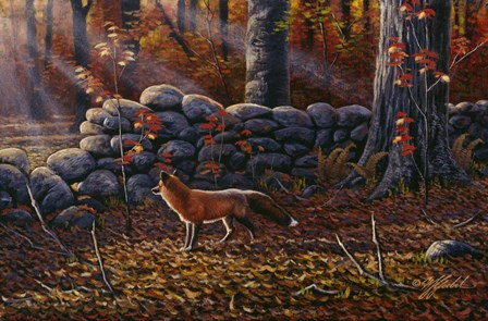 Autumn Reds - Red Fox by Wilhelm J. Goebel art print