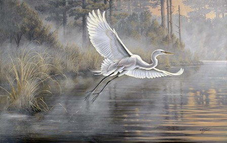 Sunrise Flight by Wilhelm J. Goebel art print