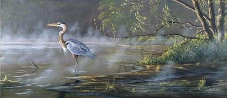 Quiet Cove - Great Blue Heron by Wilhelm J. Goebel art print
