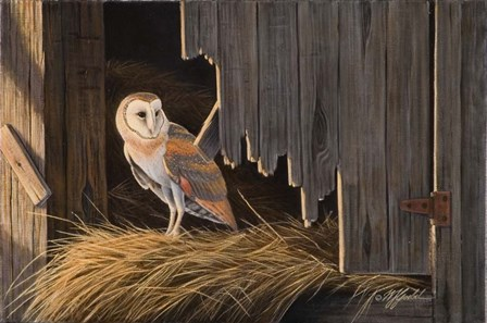 Ready For The Hunt Barn Owl by Wilhelm J. Goebel art print
