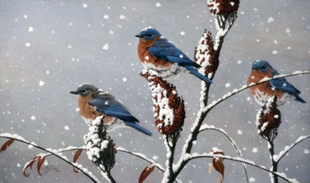 Winter Trio by Wilhelm J. Goebel art print