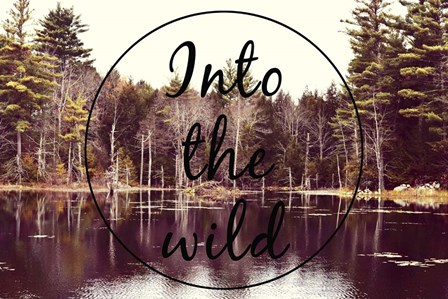 Into The Wild by Vintage Skies art print