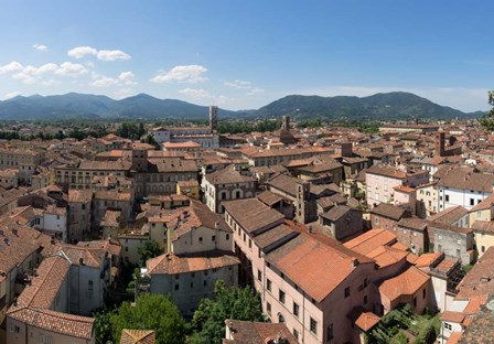 Torre Guinigi, Lucca, Tuscany, Italy by Panoramic Images art print