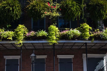 French Quarter, New Orleans, Louisiana by Panoramic Images art print