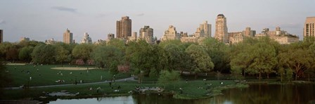 Central Park,e New York City, NY by Panoramic Images art print