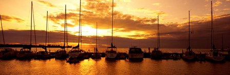 Egg Harbor. Wisconsin by Panoramic Images art print