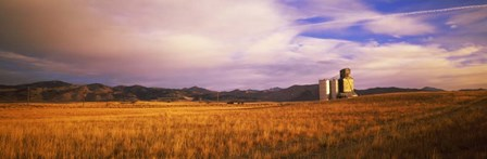 Grain Elevator, Fairfield, ID by Panoramic Images art print