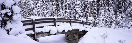 Snowy Bridge in Banff National Park, Alberta, Canada by Panoramic Images art print