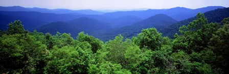 Smoky Mountain National Park, Tennessee by Panoramic Images art print