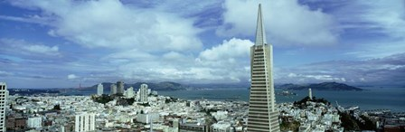 Skyline with Transamerica Building, San Fransisco by Panoramic Images art print
