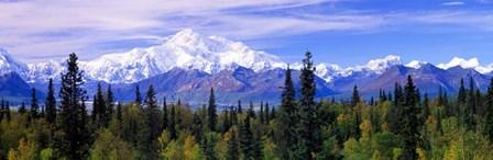 Denali National Park, Alaska by Panoramic Images art print
