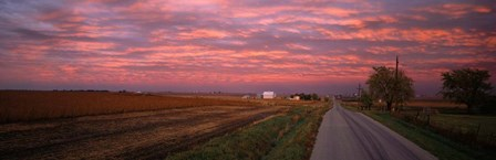 Road in Illinois by Panoramic Images art print