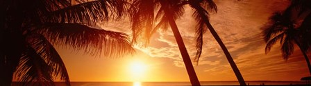Fort Meyers Florida Sunset by Panoramic Images art print