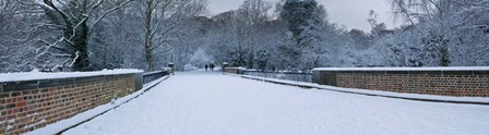 Hampstead Heath in Winter, London, England by Panoramic Images art print