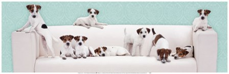 Posh Pups art print