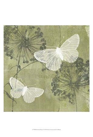 Dandelion & Wings II by Jennifer Goldberger art print