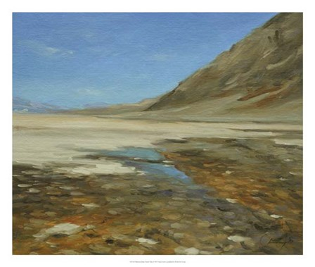 Badwater Basin, Death Valley by Chuck Larivey art print