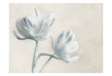 Blue Ivory Blossom 2 by Dianne Poinski art print