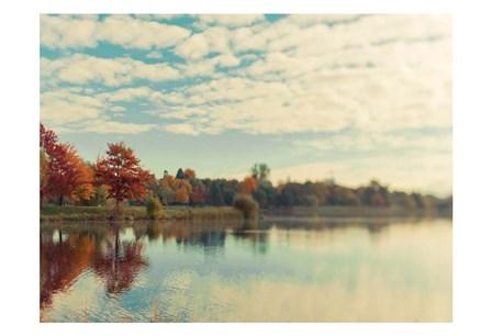 Dows Lake by Tracey Telik art print