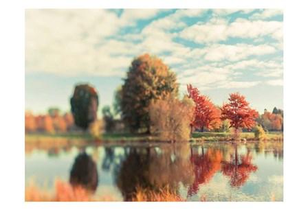 Fall Ottawa 2 by Tracey Telik art print