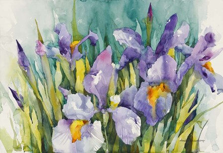 Purple Irises by Annelein Beukenkamp art print