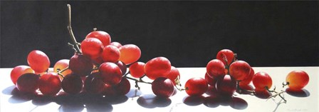 2008 Best of Show Radiant Red by Cecile Baird art print