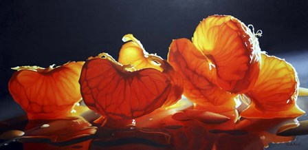 Mandarin Orange by Cecile Baird art print