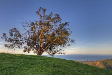 Island View by Chris Moyer art print