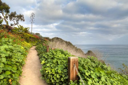 La Jolla Walk by Chris Moyer art print