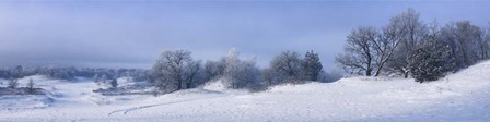 Panorama Winter Dunes by Istvan Nagy art print